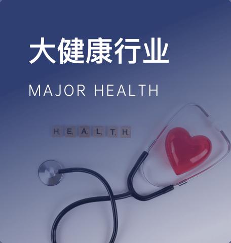 大健康行业